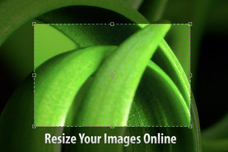 title Resize Your Images Online Without Photoshop