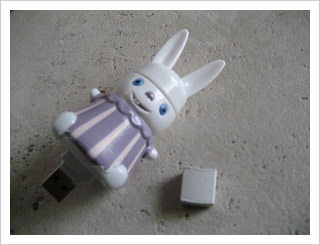 Cutest and Extraordinary USB Flashdrive